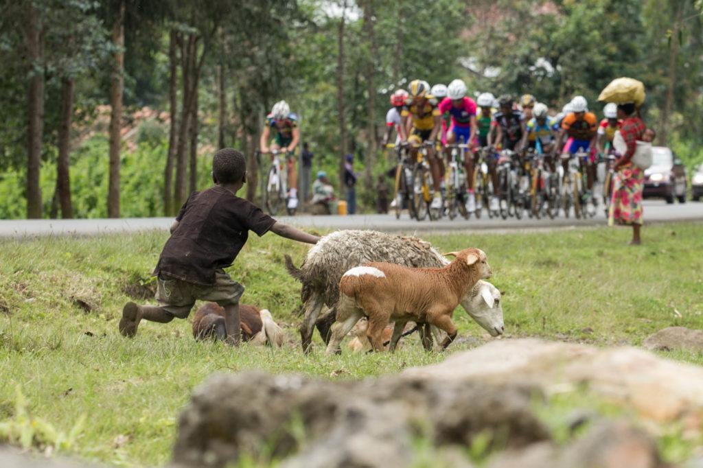 Tour of Rwanda 2013
